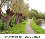 Pedestrian Pathway With Row Of...