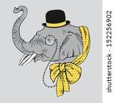 portrait of elephant in bowler...   Shutterstock .eps vector #152256902
