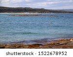 Small photo of Dolphin Dorsal Fin Parry Beach