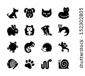 Stock vector set of web icons pet shop types of pets 152302805