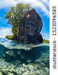 Small photo of Above and below split shot of coral reef and tropical island