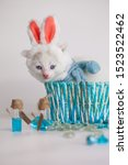 Stock photo kitten dressed as a hare cat in rabbit ears the kitten sits in a blue basket cute pets close up 1523522462