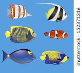 set of six tropical fish with... | Shutterstock .eps vector #152371316