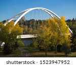 Modern through arch bridge against autumn leaves