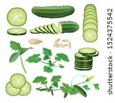 cucumber set  seeds  sprout ... | Shutterstock .eps vector #1524375542