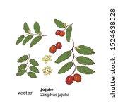 hand drawn illustration of...   Shutterstock .eps vector #1524638528