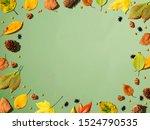 halloween and autumn leaf...   Shutterstock . vector #1524790535