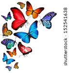 Stock photo many different butterflies flying isolated on white background 152541638