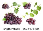 set of fresh juicy grapes and... | Shutterstock . vector #1525471235
