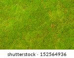 Green Moss Background Close Up