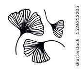 set of ginkgo biloba leaf hand... | Shutterstock .eps vector #1526353205