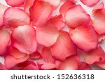 Stock photo rose petals background 152636318