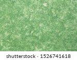 Background Of Green Amate Bark...