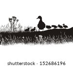 Art Families Of Mallards In Th...