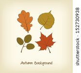 thanksgiving card with autumn... | Shutterstock .eps vector #152730938