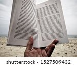 """Small photo of STUDLAND, DORSET, UK - On the beach, reading a book, held open at Preface xiv, xv, 'BUZZ', Thor Hanson. """"Colony Collapse Disorder""""."""