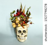 Skull With Dry Flowers....