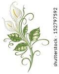 resumen,arte,flor,botánica,alcatraces,decoración,elegante,elemento,filigrana,flora,floral,florece,flores,pastos,hoja