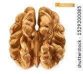 walnut kernel. 3d realistic... | Shutterstock .eps vector #1529200085