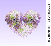 Heart Of Colorful Hydrangea On...