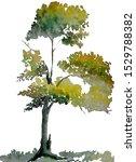 tree watercolor  green leaves ... | Shutterstock . vector #1529788382