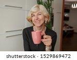 close up indoor portrait of... | Shutterstock . vector #1529869472