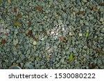 Gravel Clean Stones With Autumn ...