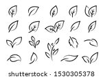 hand drawn leaf branches icons... | Shutterstock .eps vector #1530305378