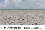 Naples Beach Florida Usa Sea