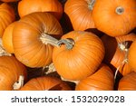 Pumpkins. Pumpkins For Sale At...