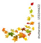 maple colored autumn falling... | Shutterstock . vector #153244622