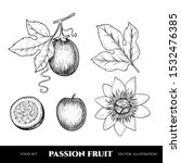 vector passion fruit hand drawn ... | Shutterstock .eps vector #1532476385
