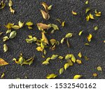 pattern background stone with... | Shutterstock . vector #1532540162