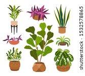 indoor plants flat color... | Shutterstock .eps vector #1532578865