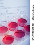 cell culture for the... | Shutterstock . vector #153303122
