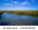 Saltmarsh along the Delaware coast in USA in late afternoon sun. Also known as a coastal salt marsh or tidal marsh it is located between land and brackish water that is regularly flooded by the tides.