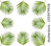 frame or coconut leaf picture... | Shutterstock . vector #1533979928