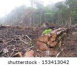 destroyed tropical rainforest... | Shutterstock . vector #153413042
