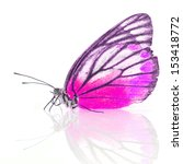 beautiful butterfly on white... | Shutterstock . vector #153418772