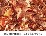 A Closeup Of A Pile Of Leaves...