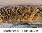 Patterns Of Tidal Mud Rivulets...