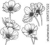 vector illustration of flowers  ... | Shutterstock .eps vector #1534727222