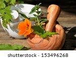 Table Garden Fresh Herbs