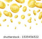 Shiny Golden Falling Coins...