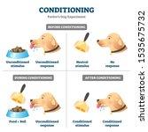 conditioning vector... | Shutterstock .eps vector #1535675732
