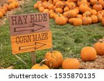 Hay Ride And Corn Maze Sign...