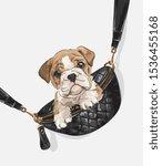 little puppy in shoulder bag... | Shutterstock .eps vector #1536455168