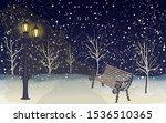 Winter Night Park   Street Lam...