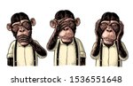 Three Wise Monkeys With Hand On ...