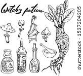 vector set of witch potion... | Shutterstock .eps vector #1537204205